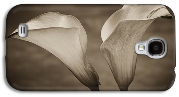 B Galaxy S4 Cases - Calla Lilies in Sepia Galaxy S4 Case by Sebastian Musial