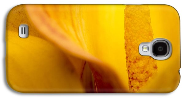 Orange Photographs Galaxy S4 Cases - Calla Lily Galaxy S4 Case by Sebastian Musial