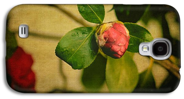Camellia Galaxy S4 Cases - Camellia Galaxy S4 Case by Marco Oliveira