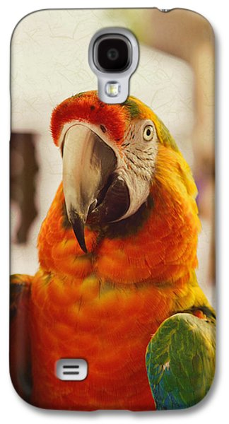 Camelot Galaxy S4 Cases - Camelot Macaw Galaxy S4 Case by Kae Cheatham