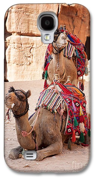 Ancient Galaxy S4 Cases - Camels in Petra Galaxy S4 Case by Jane Rix
