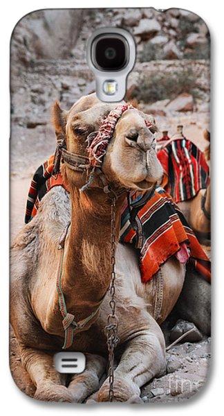 Jordan Pyrography Galaxy S4 Cases - Camels Galaxy S4 Case by Jelena Jovanovic