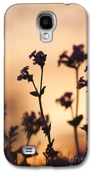 Sunset Abstract Galaxy S4 Cases - Campion Silhouettes Galaxy S4 Case by Anne Gilbert