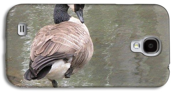 Canadian Pyrography Galaxy S4 Cases - Canadian Goose On One Leg - Cleveland Metroparks Galaxy S4 Case by Lee Neiden
