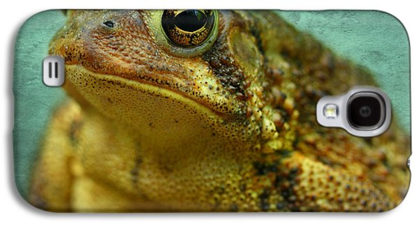 Frogs Photographs Galaxy S4 Cases - Cane Toad Galaxy S4 Case by Michael Eingle