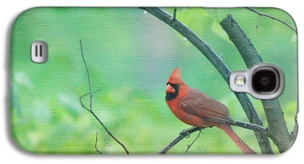 Cardinal In Rain Galaxy S4 Case by Kay Pickens