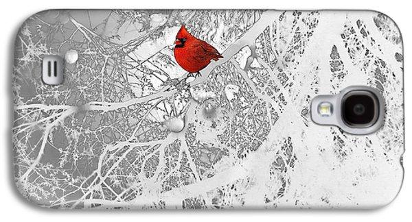 Animals Drawings Galaxy S4 Cases - Cardinal In Winter Galaxy S4 Case by Ellen Henneke