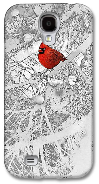 Trees In Snow Drawings Galaxy S4 Cases - Cardinal In Winter Galaxy S4 Case by Ellen Henneke