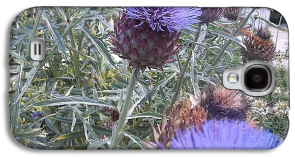 Flower Jewelry Galaxy S4 Cases - Cardoon Flowers And Bee Galaxy S4 Case by Anne Foster