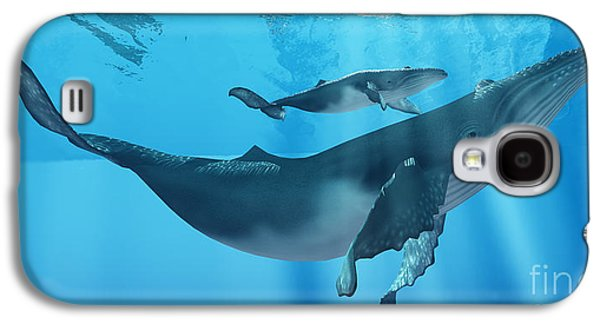 Whale Digital Art Galaxy S4 Cases - Caring Mother Humpback Galaxy S4 Case by Corey Ford