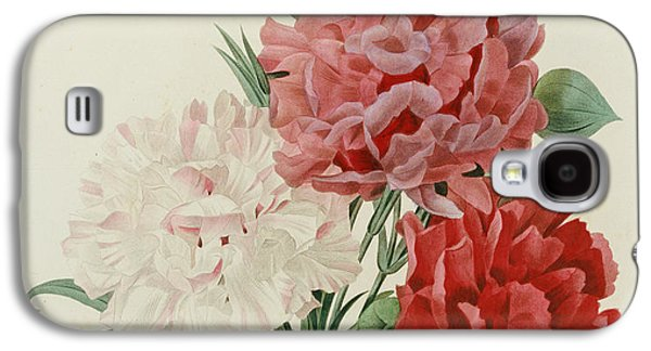 Botanical Galaxy S4 Cases - Carnations from Choix des Plus Belles Fleures Galaxy S4 Case by Pierre Joseph Redoute