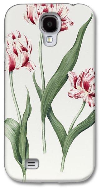 Botanical Galaxy S4 Cases - Carnival de Nice Galaxy S4 Case by Sally Crosthwaite