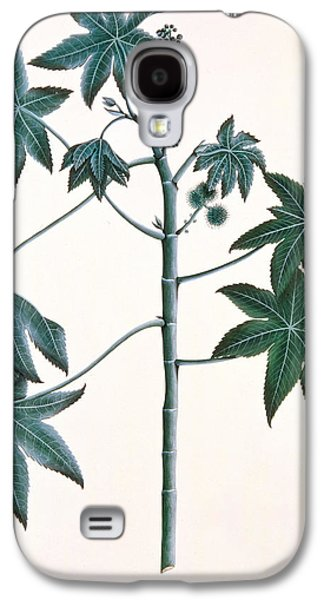 Indian Ink Galaxy S4 Cases - Castor Oil Plant Galaxy S4 Case by Indian School