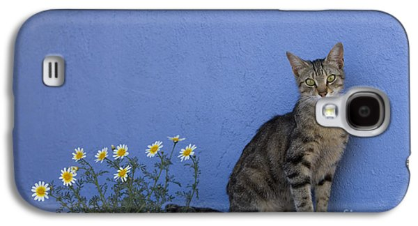 Gray Tabby Galaxy S4 Cases - Cat And Flowers In Greece Galaxy S4 Case by Jean-Louis Klein and Marie-Luce Hubert