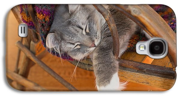 Gray Tabby Galaxy S4 Cases - Cat asleep in a wooden rocking chair Galaxy S4 Case by Louise Heusinkveld