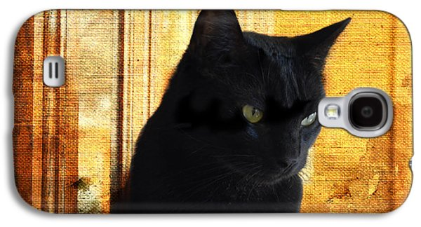 Contemplative Photographs Galaxy S4 Cases - Cat in Contemplative Mood Galaxy S4 Case by Luther   Fine Art