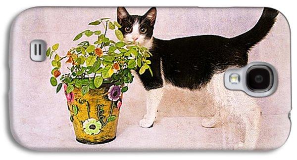 Cats Pyrography Galaxy S4 Cases - Cat Galaxy S4 Case by Monika Chomova