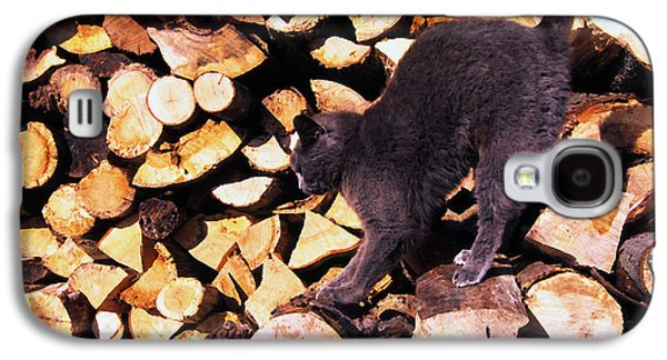 House Pet Digital Art Galaxy S4 Cases - Cat Stretching on Firewood Galaxy S4 Case by Thomas R Fletcher