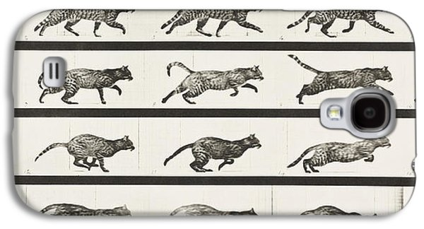 People Pyrography Galaxy S4 Cases - Cat Trotting Changing To A Gallop Galaxy S4 Case by Celestial Images