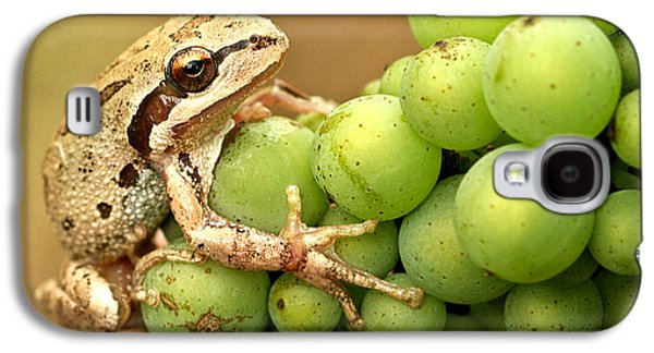 Vintner Galaxy S4 Cases - Catching a ride on the pinot Galaxy S4 Case by Jean Noren