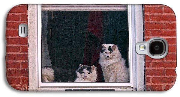 Randi Shenkman Galaxy S4 Cases - Cats on a Sill Galaxy S4 Case by Randi Shenkman