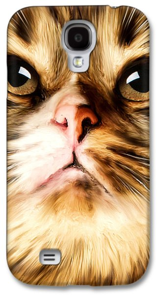 Cat's Perception Galaxy S4 Case by Lourry Legarde