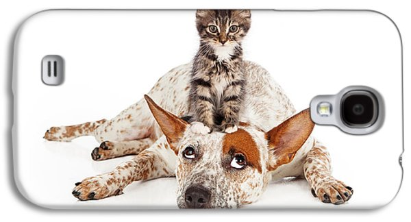 Cattle Dog Galaxy S4 Cases - Catte Dog With Kitten on His Head Galaxy S4 Case by Susan  Schmitz