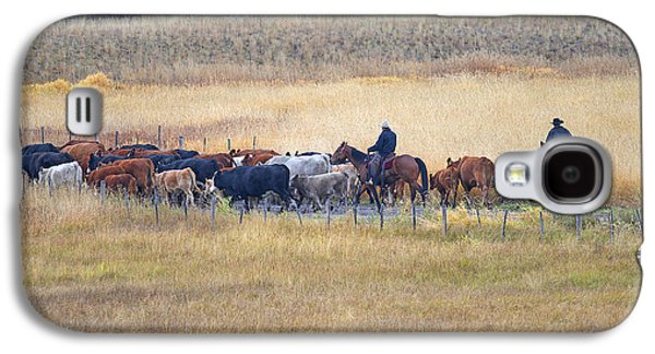 Cattle Drive Photographs Galaxy S4 Cases - Cattle Drive 2a Galaxy S4 Case by Sharon  Talson