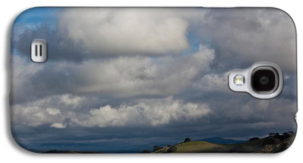 Wine Scene Galaxy S4 Cases - Cattle Grazing In A Field, Santa Galaxy S4 Case by Panoramic Images