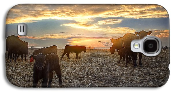Steer Galaxy S4 Cases - Cattle Sunset 2 Galaxy S4 Case by Thomas Zimmerman