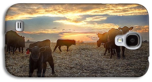 Black Angus Galaxy S4 Cases - Cattle Sunset 2 Galaxy S4 Case by Thomas Zimmerman