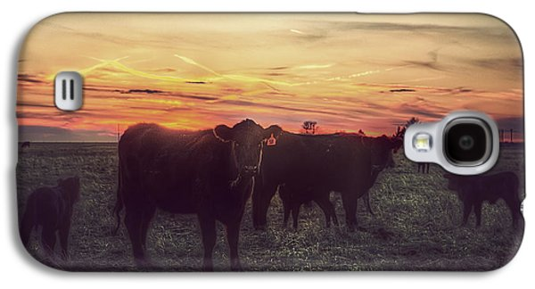 Black Angus Galaxy S4 Cases - Cattle Sunset Galaxy S4 Case by Thomas Zimmerman