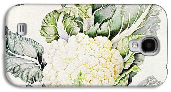 Botanical Galaxy S4 Cases - Cauliflower Study, 1993 Wc Galaxy S4 Case by Alison Cooper