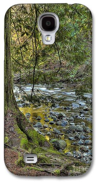 Tree Roots Galaxy S4 Cases - Cedar Tree by Kanaka Creek Galaxy S4 Case by Sharon  Talson