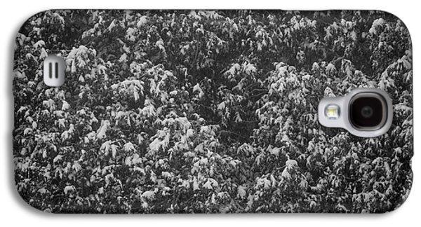Winter Storm Photographs Galaxy S4 Cases - Cedars in snow Galaxy S4 Case by Elena Elisseeva