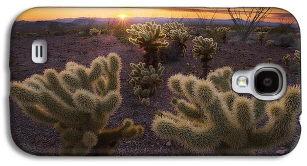 Wildlife Celebration Galaxy S4 Cases - Celebration Galaxy S4 Case by Peter Coskun
