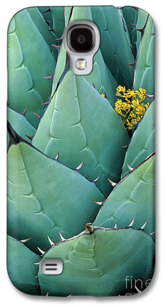 Hidden Galaxy S4 Cases - Century Plant and Tiny Blossom Galaxy S4 Case by Inge Johnsson