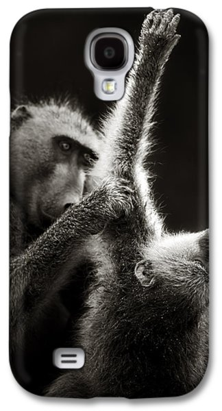 Groom Galaxy S4 Cases - Chacma Baboons Grooming Galaxy S4 Case by Johan Swanepoel