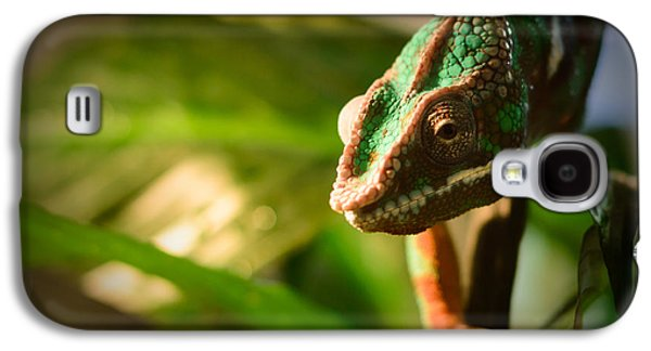 Chameleon Galaxy S4 Cases - Chameleon Galaxy S4 Case by Marco Oliveira