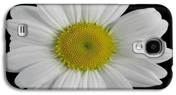 Useful Galaxy S4 Cases - Chamomile Flower Galaxy S4 Case by Cheryl Young