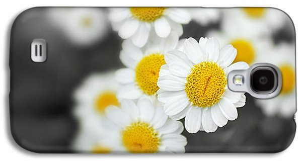 Close Focus Floral Galaxy S4 Cases - Chamomile Galaxy S4 Case by Jane Rix