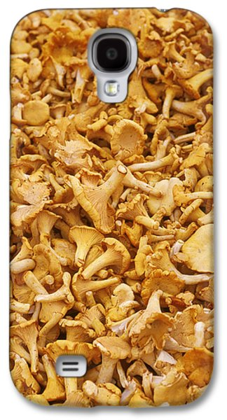 Chanterelle Mushroom Galaxy S4 Case by Anonymous