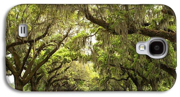 Live Art Galaxy S4 Cases - Charleston Avenue of Oaks Galaxy S4 Case by Stephanie McDowell