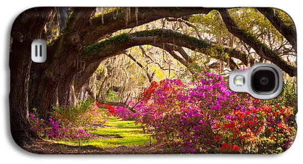 Overhang Photographs Galaxy S4 Cases - Charleston SC Magnolia Plantation Gardens - Memory Lane Galaxy S4 Case by Dave Allen