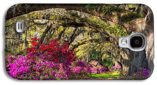 Live Oaks Galaxy S4 Cases - Charleston SC Spring Azalea Flowers - A Servants Grace Galaxy S4 Case by Dave Allen