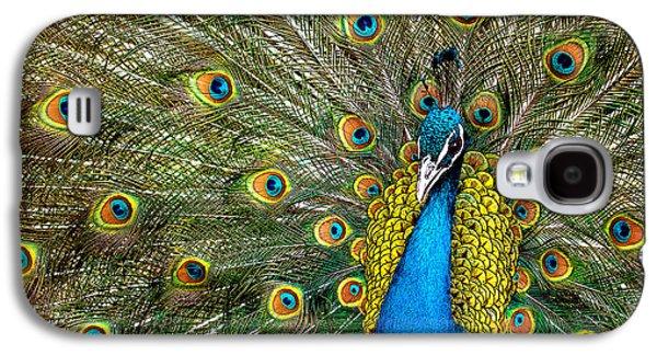 Fauna Photographs Galaxy S4 Cases - Charming Galaxy S4 Case by Ivan Vukelic