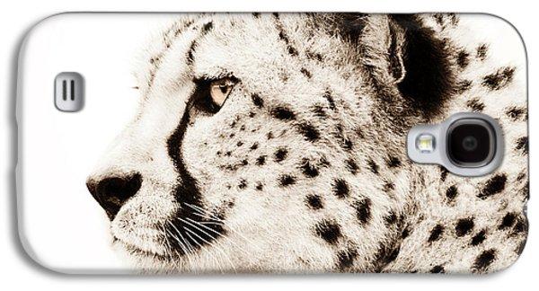 Wildlife Digital Galaxy S4 Cases - Cheetah Galaxy S4 Case by Photodream Art