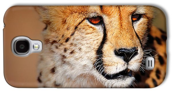 Closeup Photographs Galaxy S4 Cases - Cheetah portrait Galaxy S4 Case by Johan Swanepoel