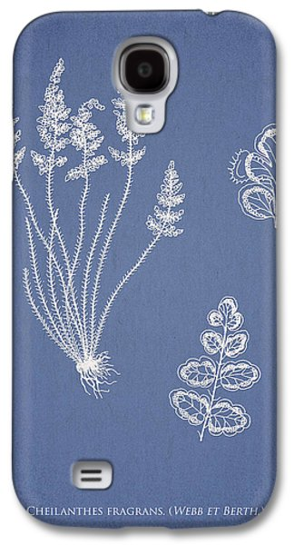 Ornamental Digital Art Galaxy S4 Cases - Cheilanthes fragrans Galaxy S4 Case by Aged Pixel