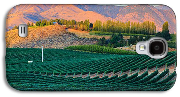 Recreation Photographs Galaxy S4 Cases - Chelan Vineyard Panorama Galaxy S4 Case by Inge Johnsson
